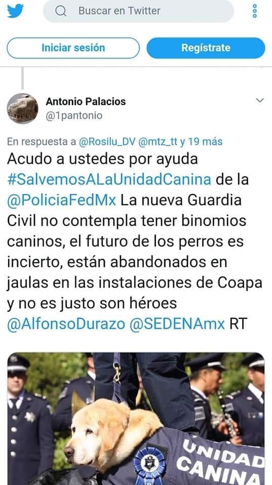 Gabriela Rivera Loza Funambulita تويتر