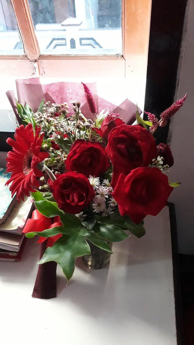 Nday On Twitter Selamat Pagi Dari Aku Dan Bunga Bunga Cantik Di Kamarku Yg Masih Ku Pertahankan Untuk Tetap Hidup