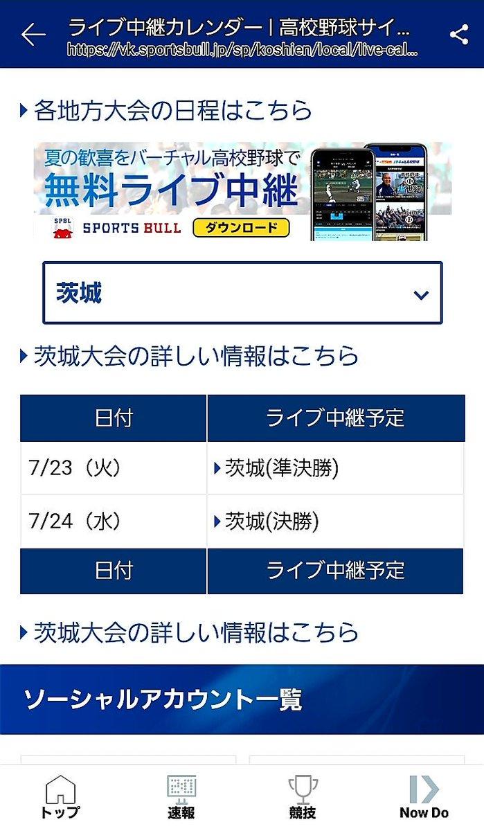 千葉 県 高校 野球 日程