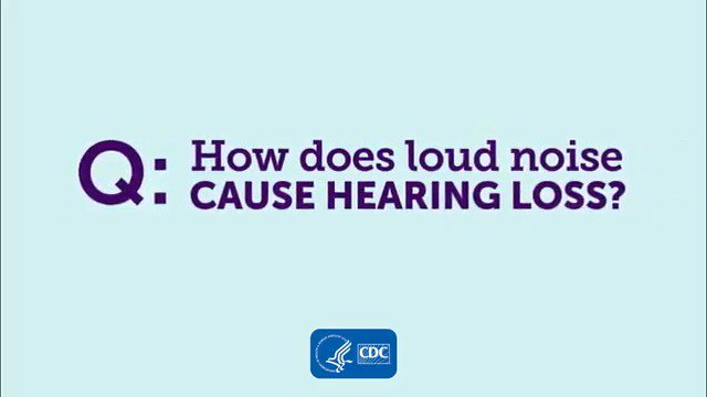 Image for the Tweet beginning: #DYK? Repeated exposure to loud