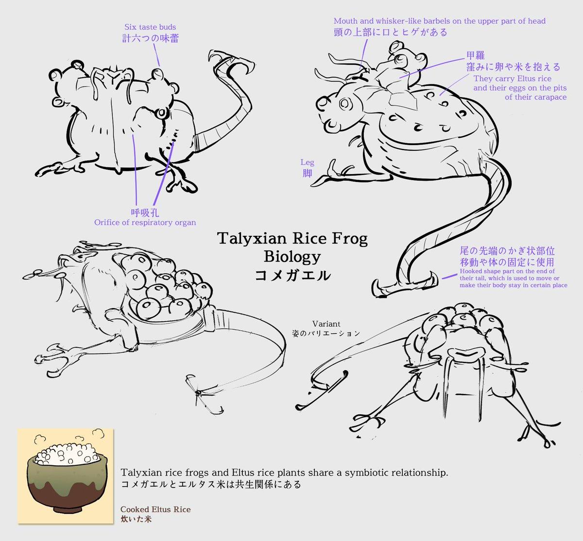 📖Wiki and Lore Update! We've got two fresh articles!  Eltus Rice: http://vilous.net/wiki/Eltus_Rice Talyxian Rice Frogs: http://vilous.net/wiki/Talyxian-Frogs…  ビロウスWiki新記事:エルタス米とコメガエル  エルタス米 http://vilous.net/wiki/%E3%82%A8%E3%83%AB%E3%82%BF%E3%82%B9%E7%B1%B3…  コメガエル http://vilous.net/wiki/%E3%82%B3%E3%83%A1%E3%82%AC%E3%82%A8%E3%83%AB…  #Vilous #Talyxian #Eltus