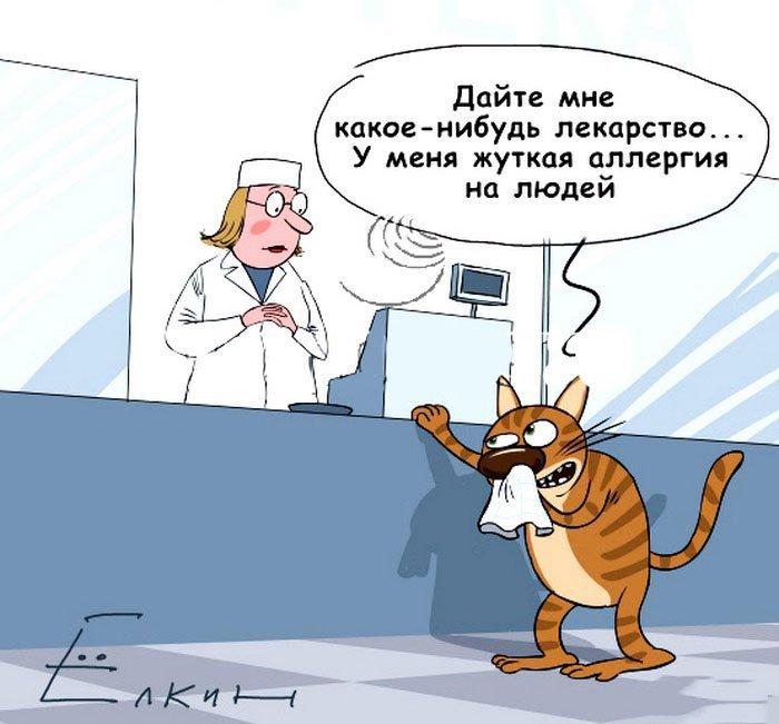 Аллергия смешные картинки