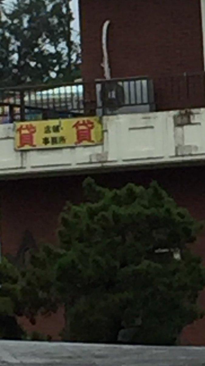 団 事務 探偵 所 ハイサイ