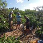 Image for the Tweet beginning: #IGUANE Day 3: Analyzing seawater,