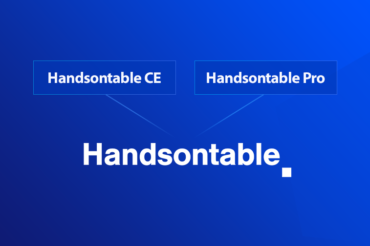 Handsontable Numeric Format Not Working