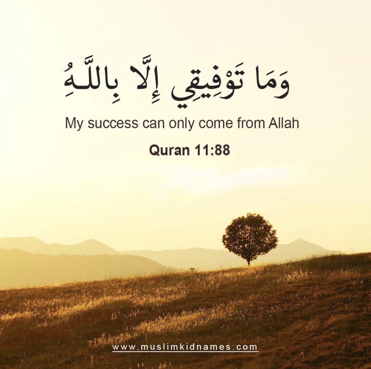 Islamicquotes (@Islamicquotes6) | Twitter
