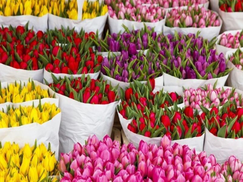 Где купить цветы на 8 марта в москве