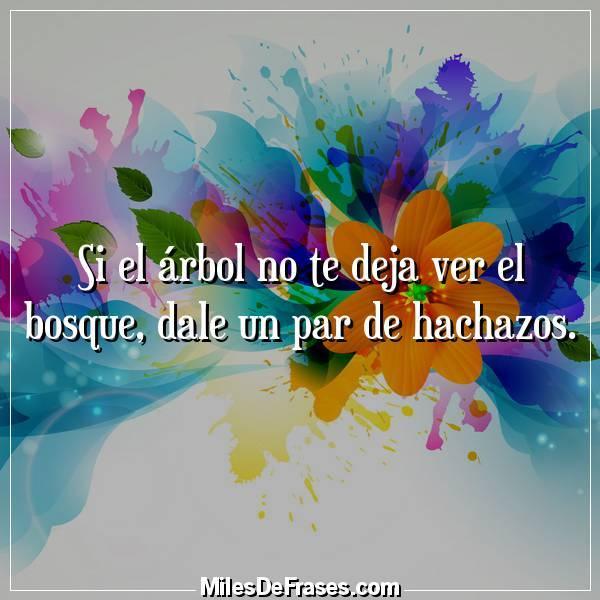 Frases En Imagenes On Twitter Si El Arbol No Te Deja Ver El Bosque Dale Un Par De Hachazos Frases Citas Https T Co Welwuivz5p Twitter