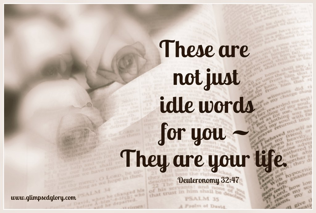 """Gloria Preciado sur Twitter : """"Deuteronomy 32:47 These instructions are not  empty words--they are your life! By obeying them you will enjoy a long life  in the land you will occupy when"""
