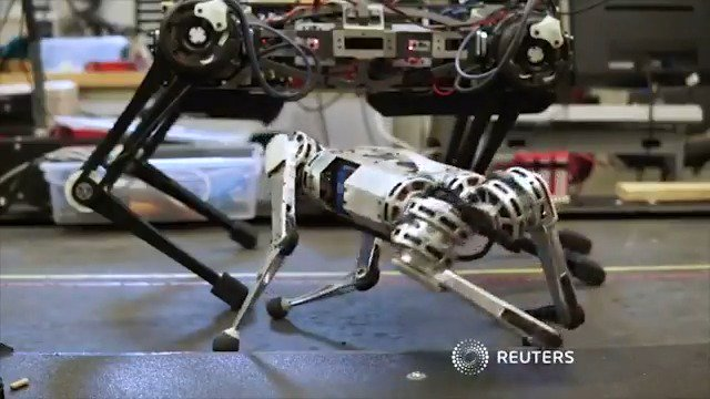 Engineers from MIT have built a backflipping four-legged robot 'cheetah'
