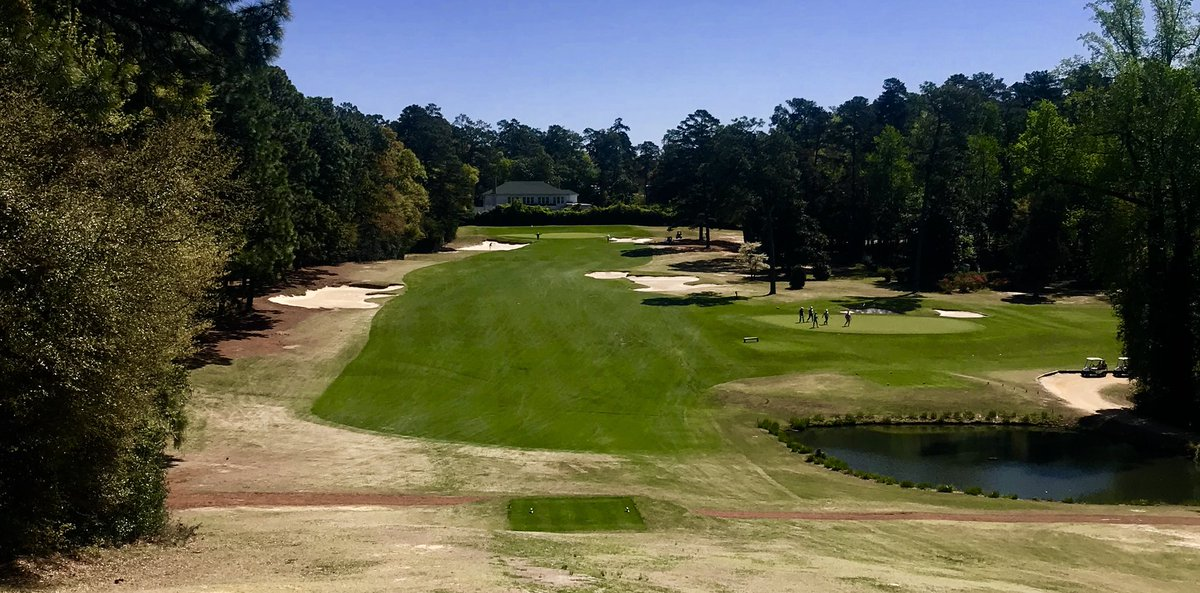 Image result for Palmetto Golf Club