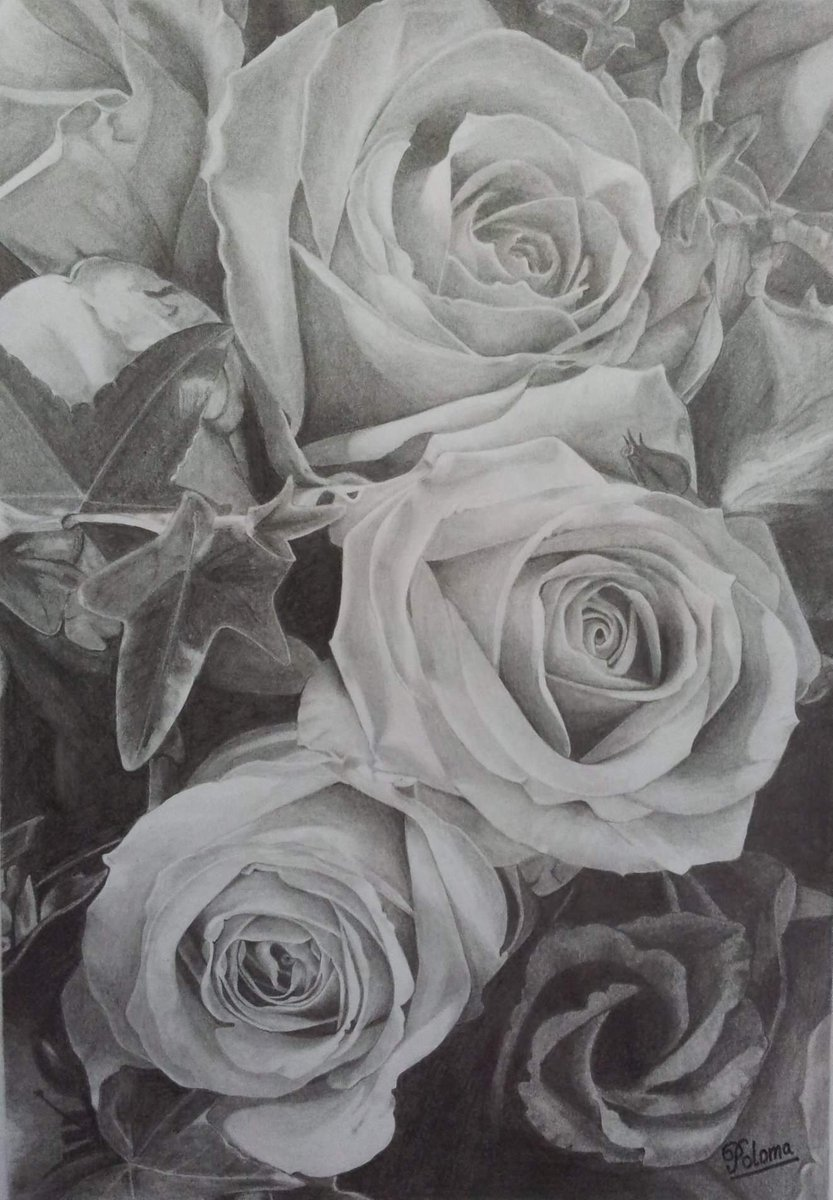 Roses pencil sketching made by me #fineart #pencils #sketching #art #artists #fineart #rose #rosedrawing #artistsontwitter #realismdrawing #photorealism #hyperrealism #pencildrawing #fineart #artist #graphite #artwork #artwork #artistsofinstagram #artisticpic.twitter.com/vj4bDve9de