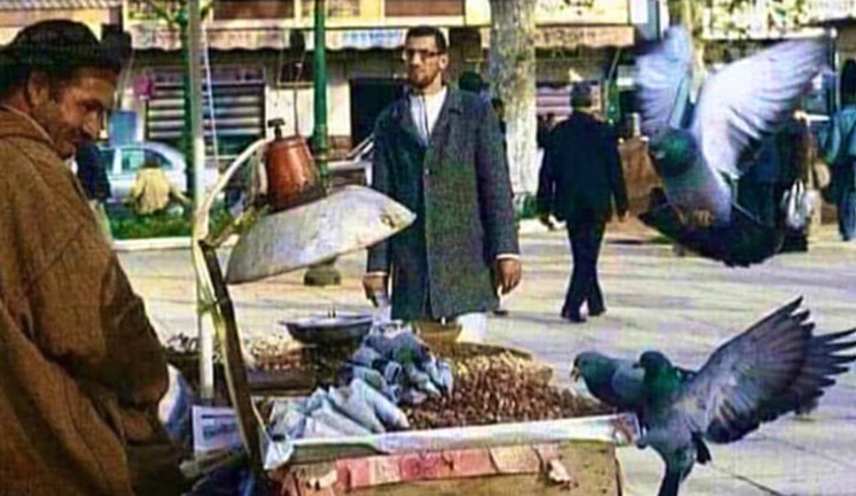 تركها تأكل رزقه وهو يبتسم فما أقبح الفقر وما أجمل الفقراء ...📸📽🎞💌🦋