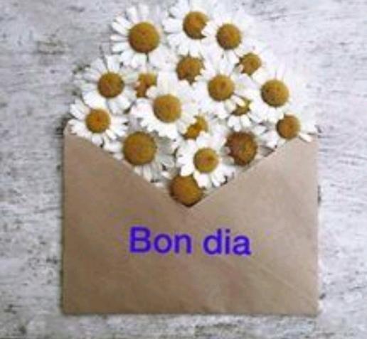 """Fada S. Esteve de les Roures 🎗️🎗️🎗️ on Twitter: """"Tu que ets ..."""