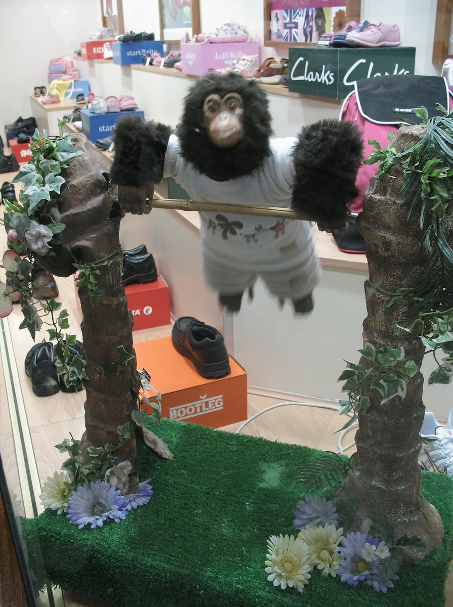 No1tingham On Twitter Charlie The Chimp Also Known As The