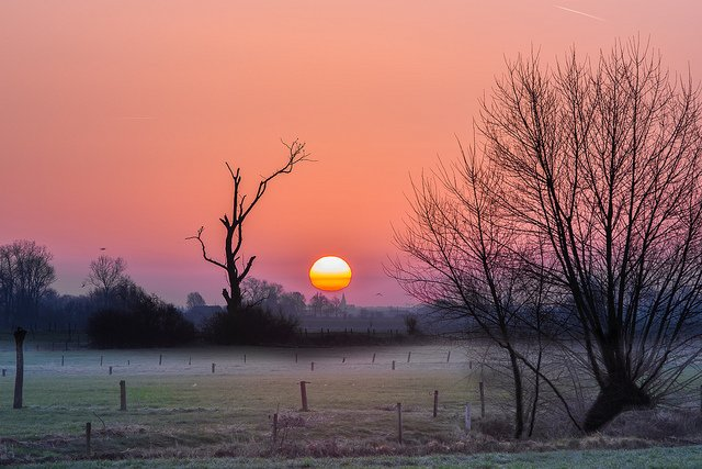 🅱️uenos días amores! 🅱️uenos días mundo! 🅱️uenos días a tod@s!  Todos los días sale el Sol. Sin embargo, ninguno es igual al anterior. Hacer que vivirlo valga la pena, sólo depende de nosotros. ¡Adoptemos la felicidad como sistema!  ¡Ganas de sentirte!  #FelizViernes  #FelizFinde