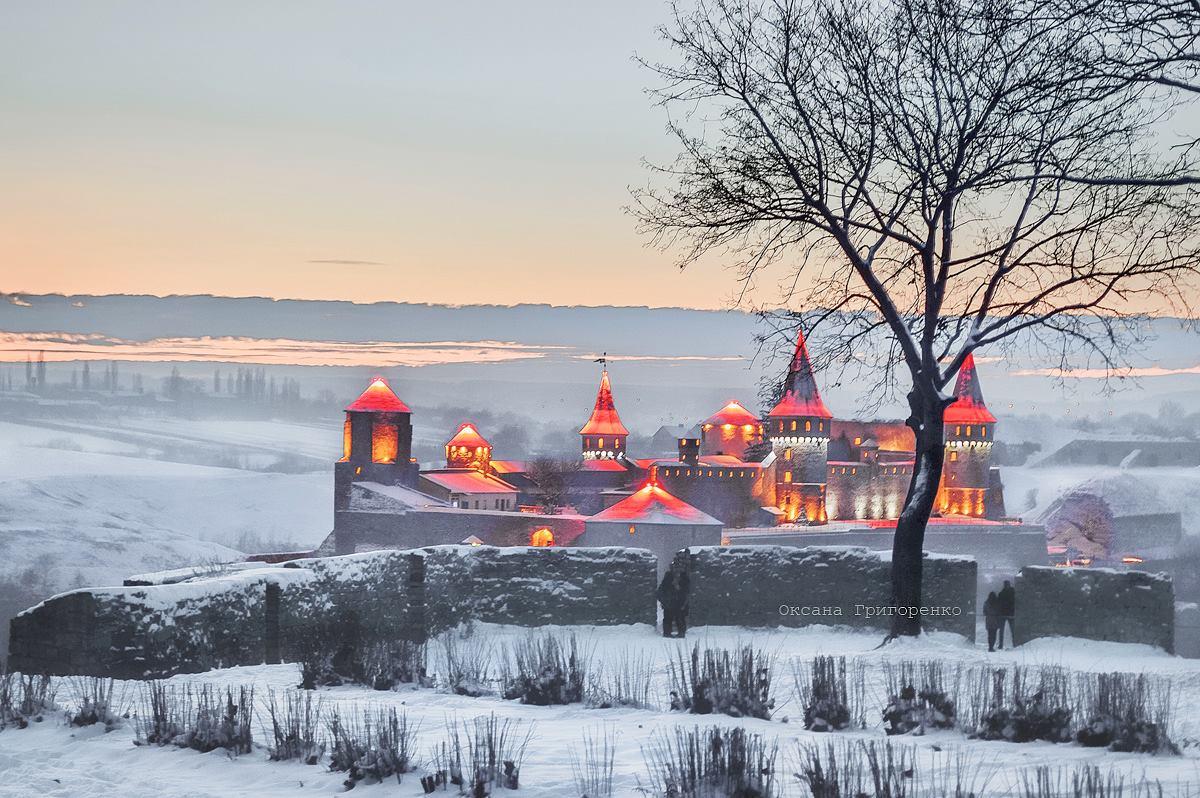 Картинки по запросу кам'янець подільський зима