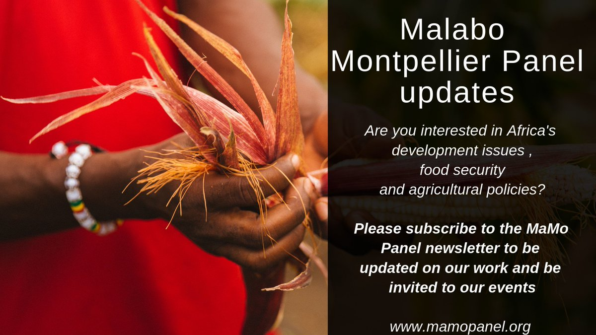 test Twitter Media - Do you want to know what @Mamopanel members are up to? Read our latest news & blogs? Be the first to discover our reports and resources? Be invited to our events? Then please subscribe to the Malabo Montpellier Panel newsletter @CTABrussels @FAOWestAfrica https://t.co/VkQnnnwaar https://t.co/CpEfOkcyjF