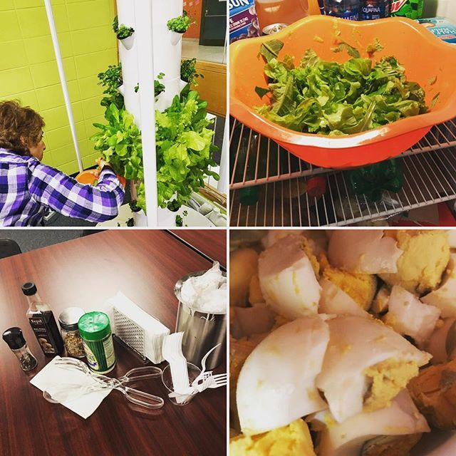 Sharing our First Harvest with our Lakeview colleagues #freerangeeggs 🥚 #towergarden 🥬 http://bit.ly/2IwmjwV