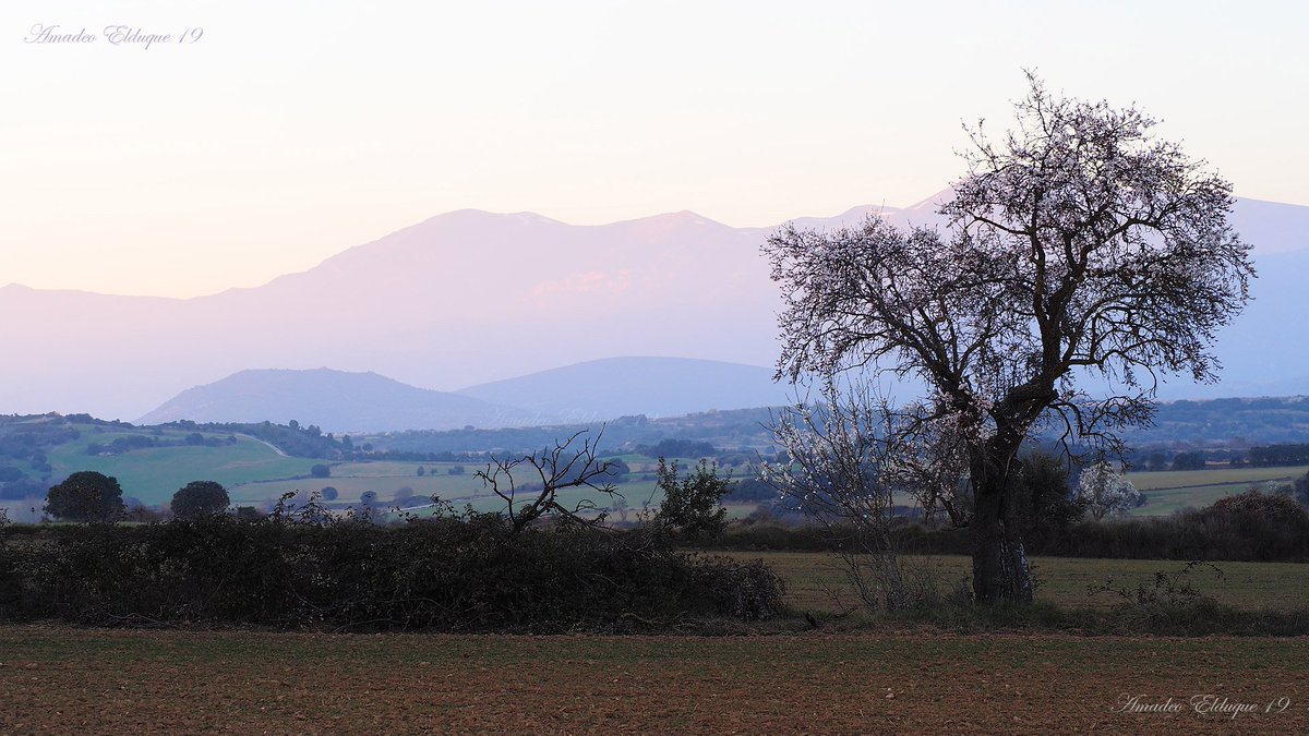 Últimas luces en el #Somontano de #Barbastro cerca de #Adahuesca, #Guara al fondo #Huesca #Aragón #Spain.  @DPHuesca @DescubreHuesca @QuedamosHuesca @Huesca_LaMagia @EnjoyAragon @aragonturismo @RadioHuesca @altoaragon @EsRadio_Huesca @SomontanoGuara @DOSomontano @CSomontano