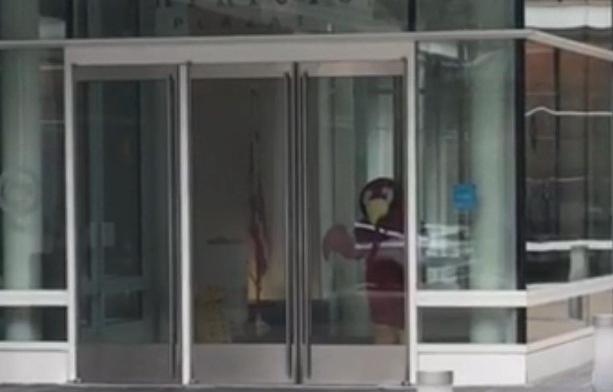 """.@FossumSamuel's best update from #CNNStakeout today:  """"Someone in a parrot costume went up to the door. They 'banged' their beak against the glass then showed us their parrot butt... I assume someone inside is making fun of the press out here."""""""