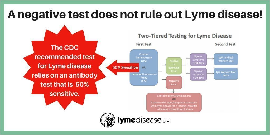 test Twitter Media - A negative test does not rule out #LymeDisease Learn more about how to diagnose Lyme here: https://t.co/OssrqDlLkD https://t.co/4uONqAtSgT