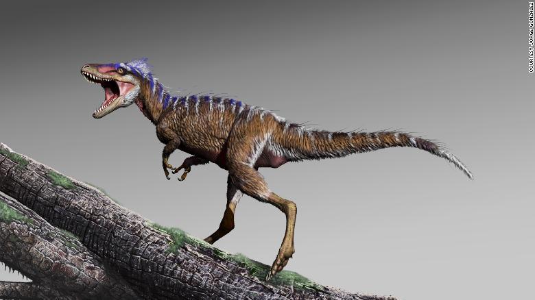 "ark: survival evolved on twitter: ""before tyrannosaurus rex was king"