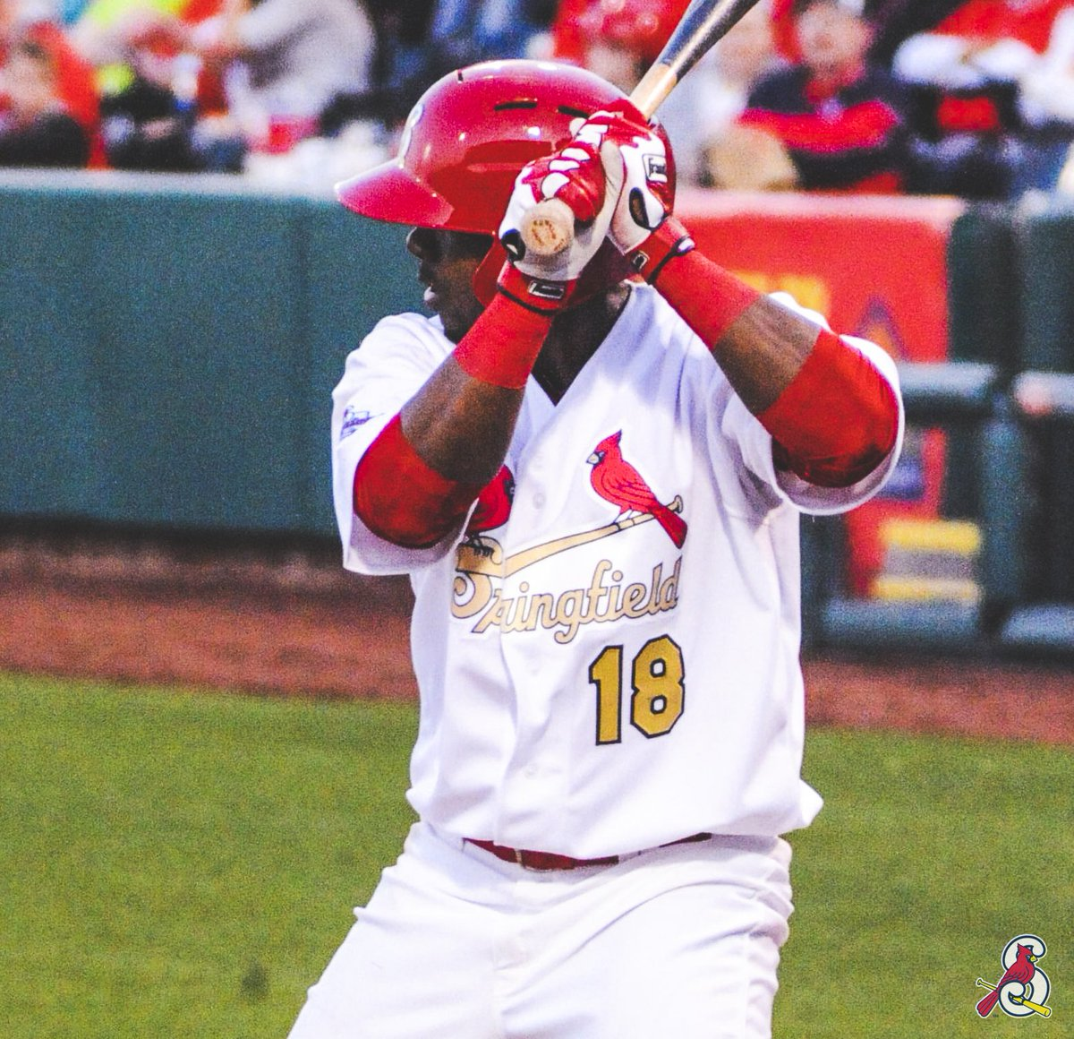 1c53e77cb294 Springfield Cardinals on Twitter
