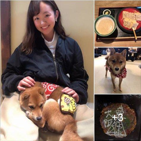 #キャストピ !    皆さんこんにちは! #ケーブルNews 木曜・金曜担当の松下 凪です! 2月の上旬頃、京都と大阪に遊びに行ってきました! 🔗https://www.facebook.com/cablenetsuzuka/posts/2254711568107425…