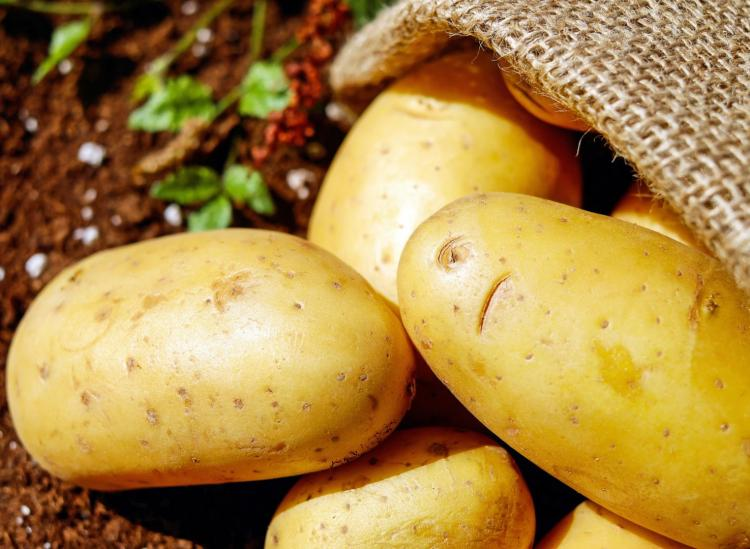 RT Potatoes Are The Ultimate Surprise Superfood - The truth is that potatoes not only have vitamins and minerals, but they can nourish your body better than some other popular superfoods swirleddotcom ➡ https://t.co/IAewQvMs92 https://t.co/SRLWGV8cT7 #health  #well