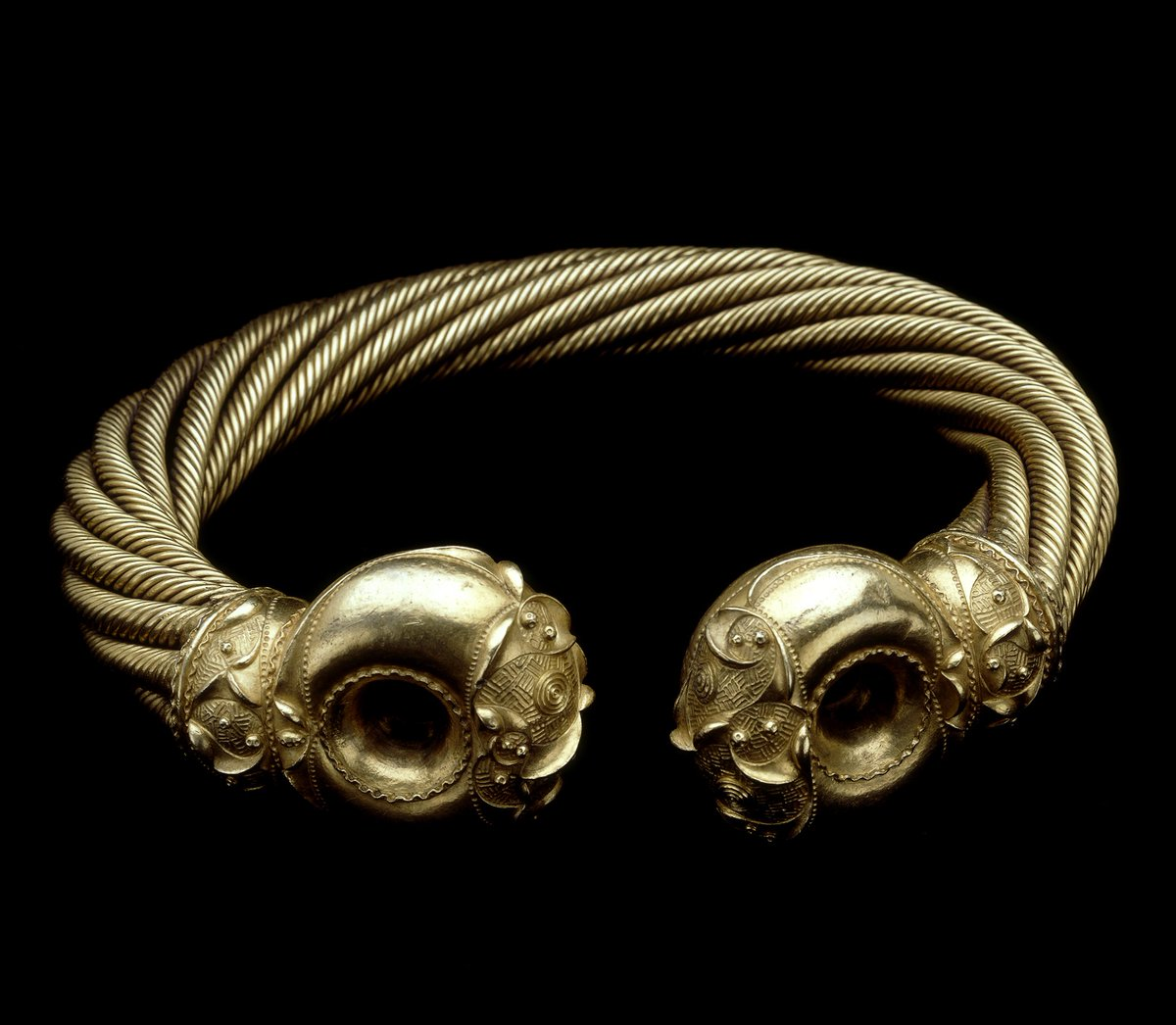 This Iron Age neck-ring is one of the most elaborate golden objects from ancient Britain. Known as the Snettisham Great Torc, it is made from just over a kilo of gold mixed with silver ✨  Buried around 75 BC, the torc was found in 1950 in Norfolk, England  https://t.co/9UluR1Oz82