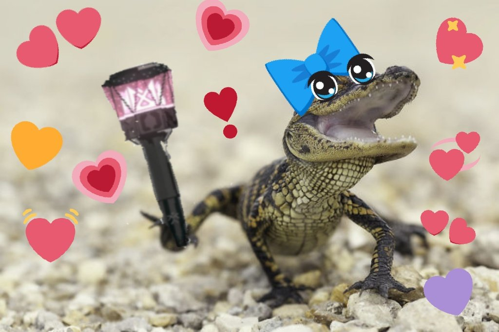 Monbebes, Pls don&#39;t let baby Ali drown   Keep Ali swimming for another day     #ALLIGATOR  #MONSTA_X  #WE_ARE_HERE_몬스타엑스  @OfficialMonstaX<br>http://pic.twitter.com/AZTpY1mGJn