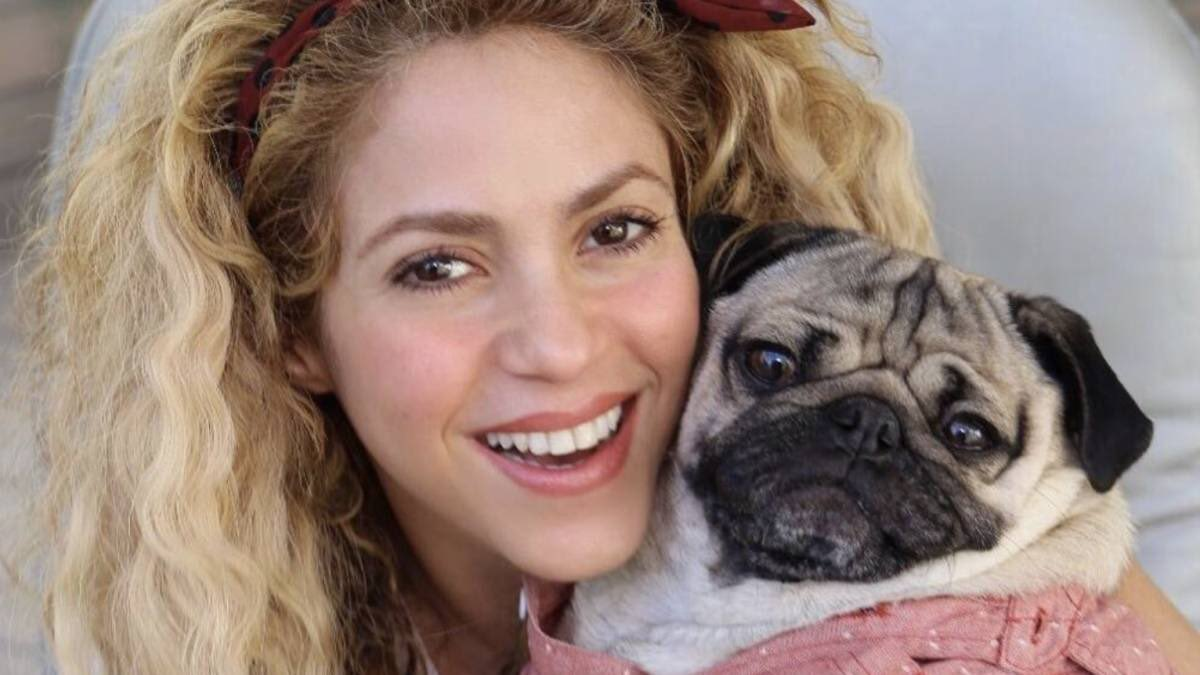 Cute shakira with animals pictures thread  <br>http://pic.twitter.com/S3atMDV9M1