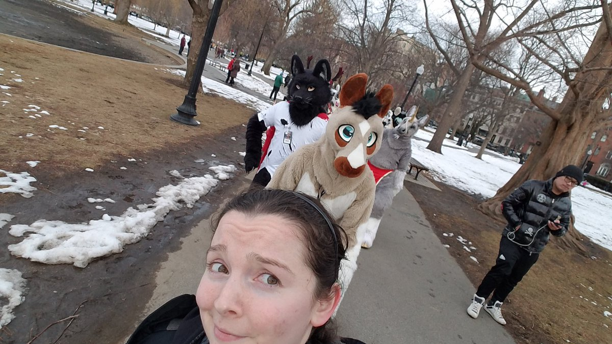 Took some animals for a walk! #ANE2019 #Boston<br>http://pic.twitter.com/ytcgbfCeAI