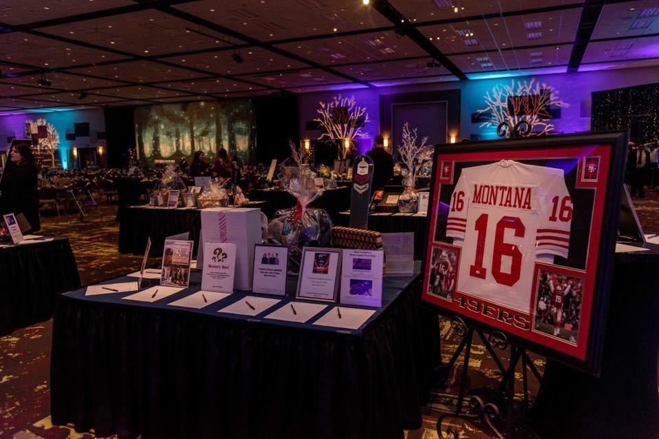 Jayden Deluca Foundation's 2019 Masquerade Ball was an affair to remember! They bring so much heart into the room as they work diligently to support families and their children fighting cardiac disease. #partyforacause #jdf #makeadifference #auctionfrogs #boisenonprofit #auction