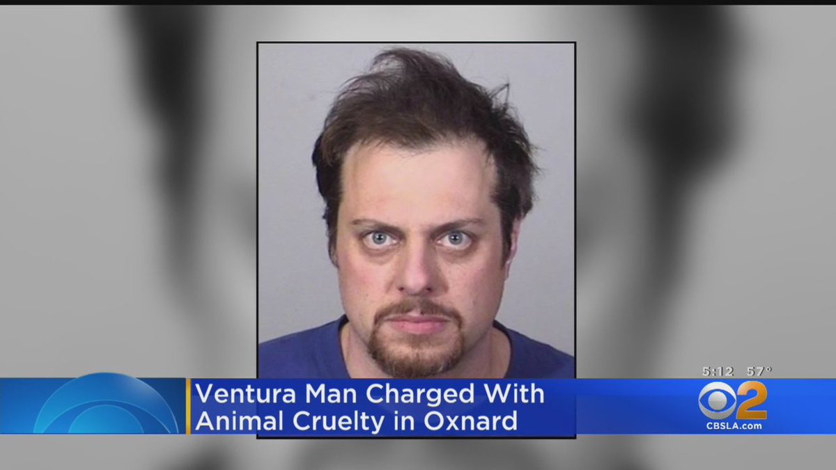Oxnard Police said Eric Danielson, 37, of Ventura, fatally shot a cat in the alley next to an Oxnard office building using a crossbow on Feb. 18. He was charged with felony animal cruelty and is now out on bond.  https://t.co/2wiZcTySDi
