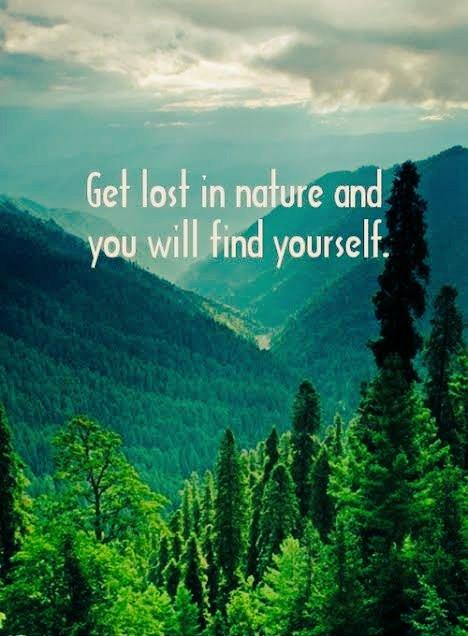 naturequotes hashtag on twitter