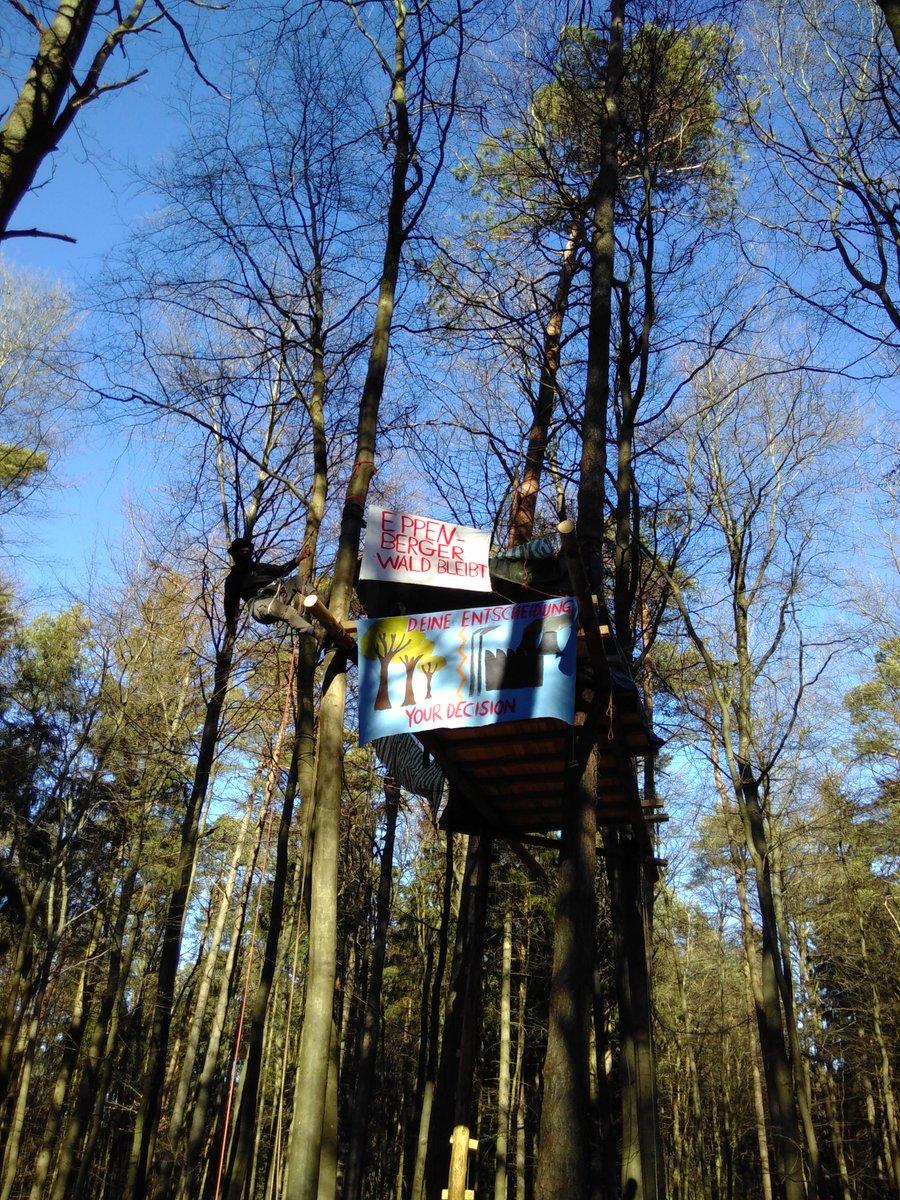 Als gäbe es noch nicht genug Straßen, Schlote & Industrie: Überall in Deutschland sollen neue Gewerbegebiete entstehen, Äcker versiegelt und Wald gerodet. Hiermit ist Schluss - Der Wald ist besetzt! @robin_wood @HambiBleibt @Ende__Gelaende #EppenbergwaldBleibt #eppenberg #eifel