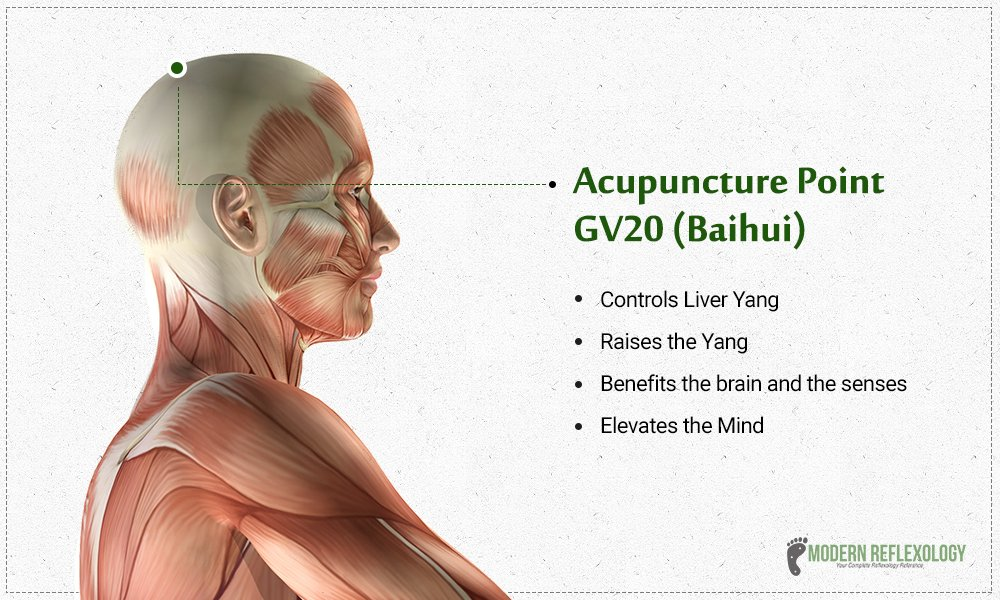 "Modern Reflexology on Twitter: ""The #GV20 #Acupuncture point is a great  point to raise the #Yang. #Reflexology #ModernReflexology… """