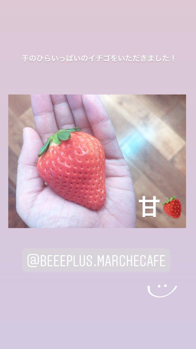 マルシェ ビー プラス 「ビープラスマルシェアンドカフェ」武雄にある新鮮フルーツが楽しめるカフェ|サガクエスト