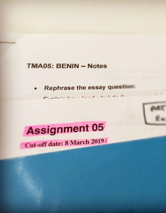 aa100 benin essay
