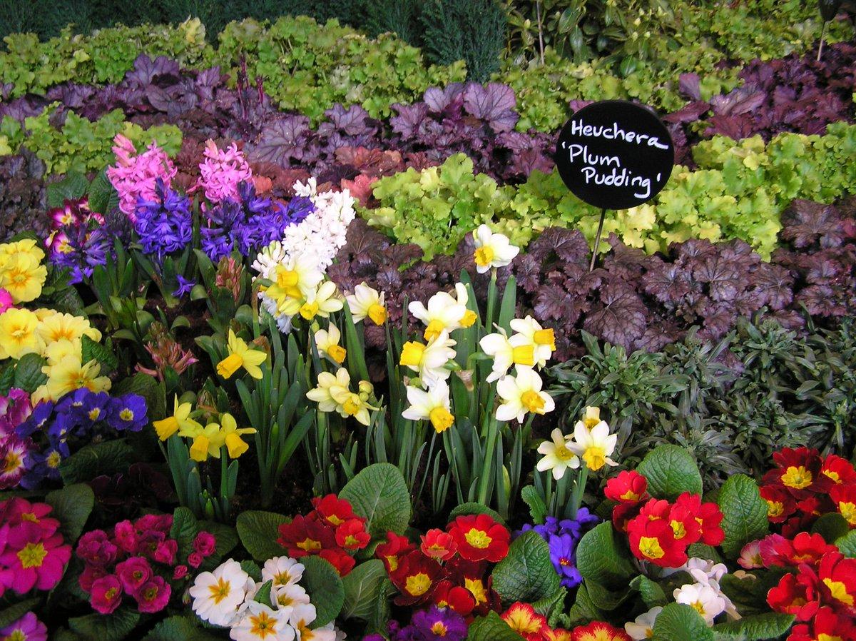 northwest flower & garden festival; feb 26-mar 1 (@nwfgs) | twitter
