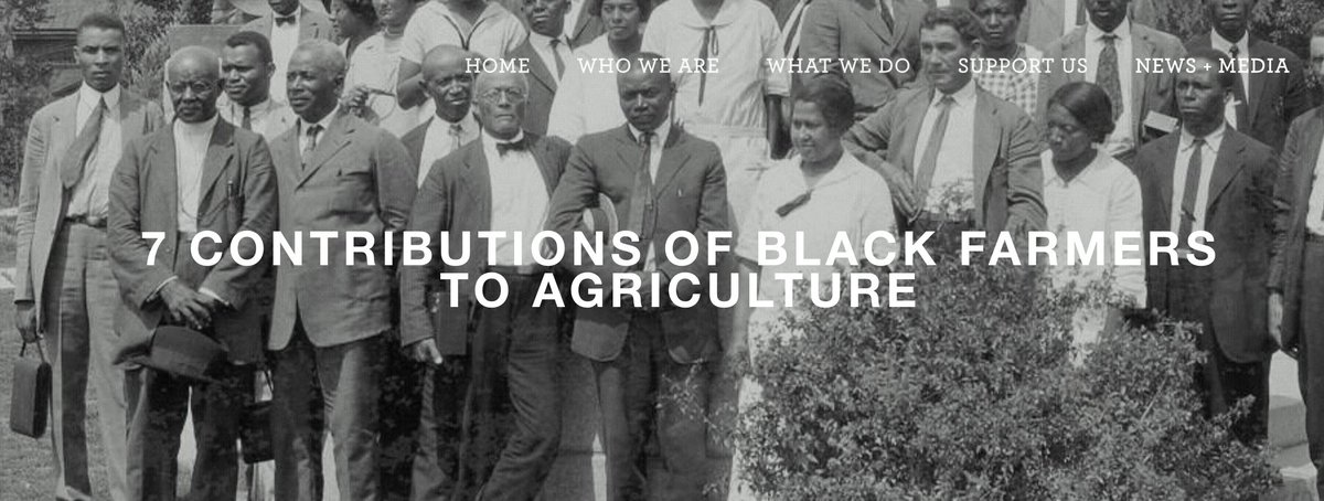 In celebration of Black History month, we are highlighting seven major agricultural contributions from African American farmers, horticulturists, and inventors. Their contributions have revolutionized the way our food system functions today.  https://www.farmproject.org/blog/2017/2/4/hikqys8igvv0bo368aco3mrb1rv7d1…