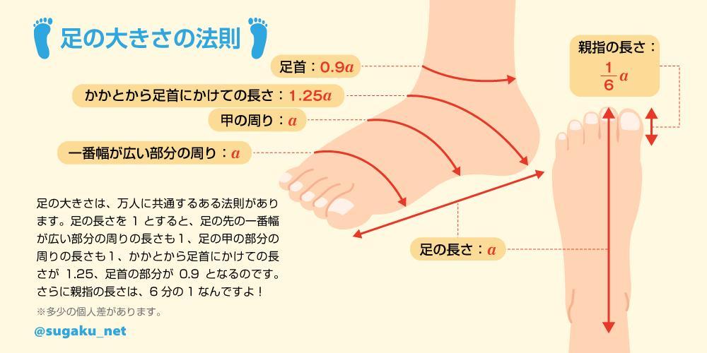 実用数学技能検定(数学検定・算数検定)'s photo on #靴の記念日