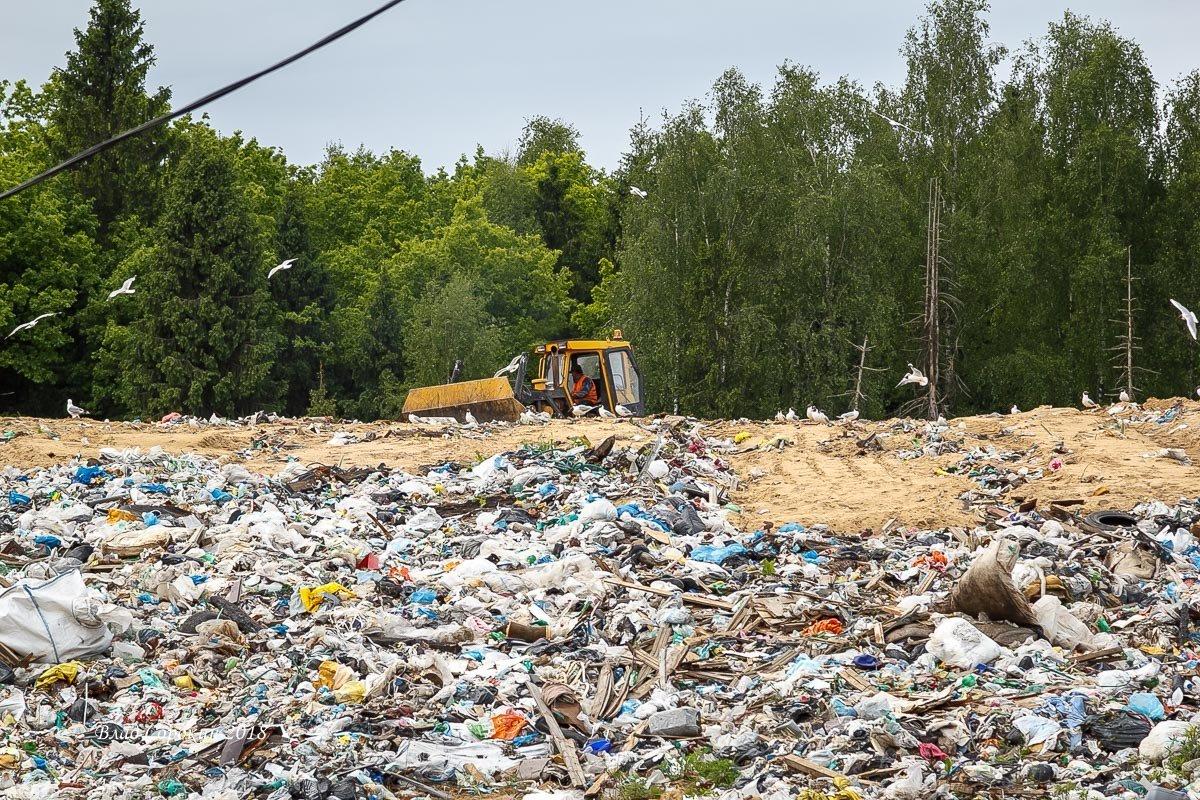 экология владимирской области в картинках компания