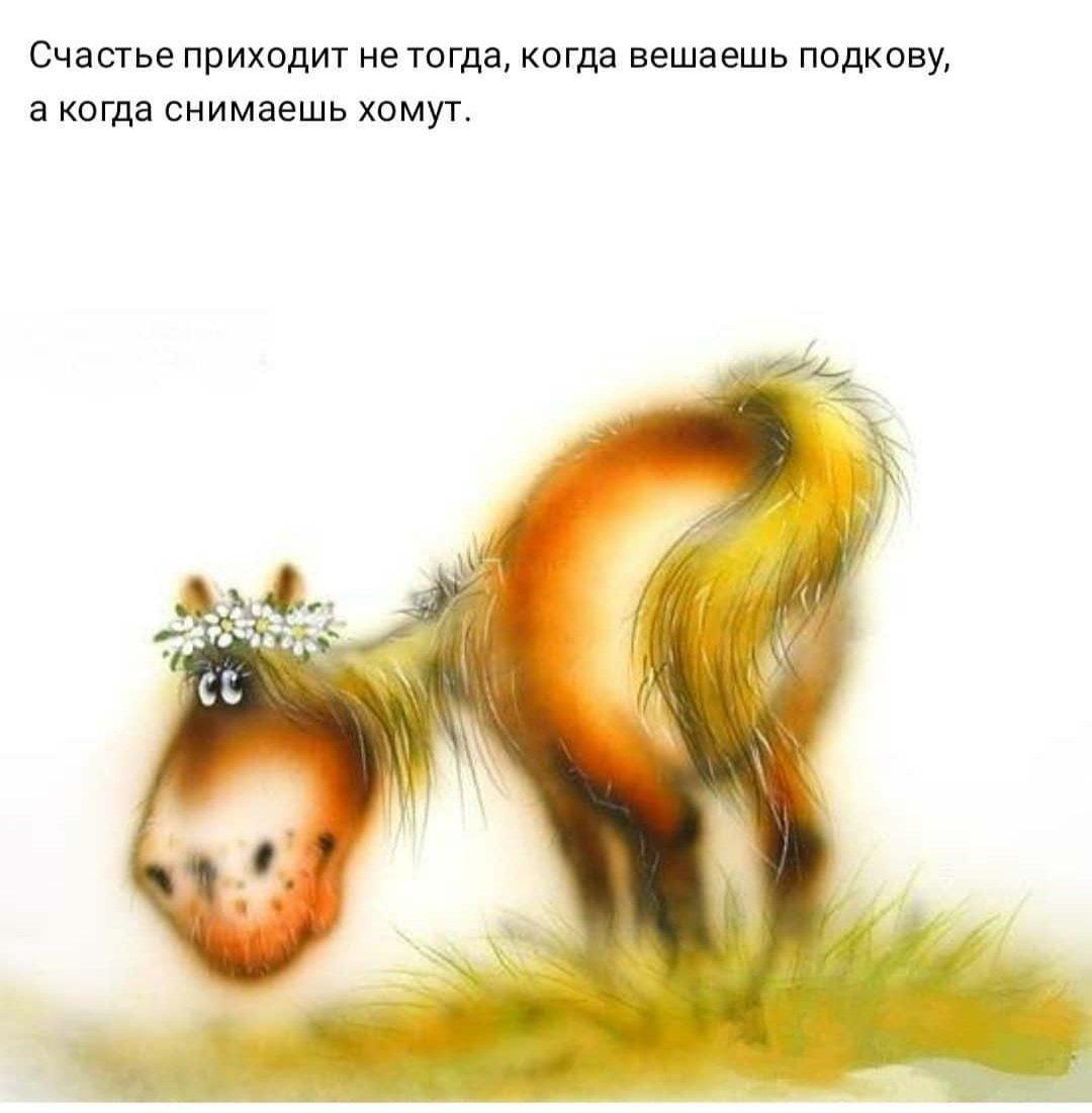 Картинки с добрым утром и хорошего дня прикольные с лошадками