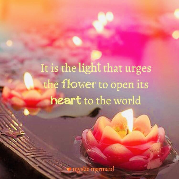 RT @KariJoys: Your #Light encourages others to open their #Hearts! #JoyTrain #Joy #Love #Kindness RT @pkamla1 https://t.co/KlgwpsHFJE