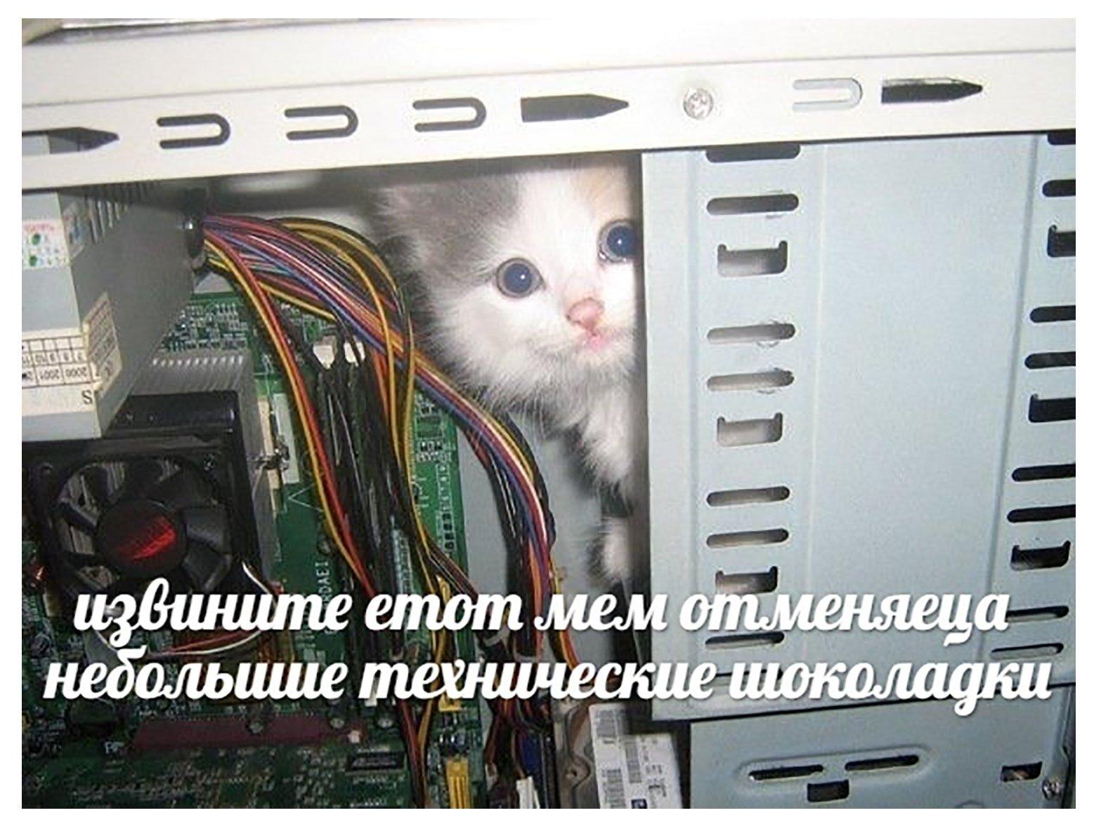 Приколы компьютерные картинки