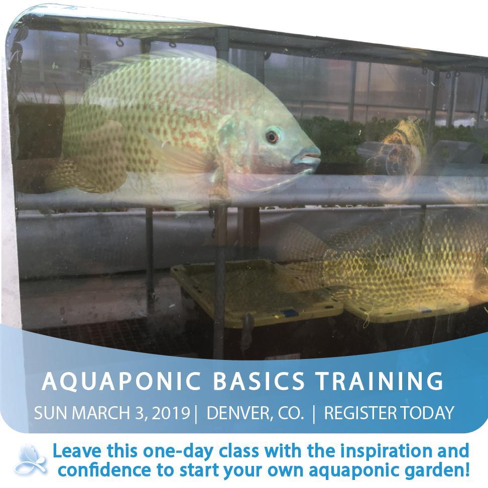 The Aquaponic Source (@aquapon) | Twitter