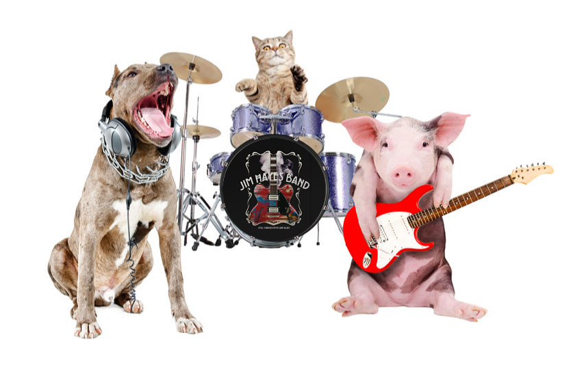 Friday, March 29 - Hawthorne-centric event - come to @Shortwaysbarn  and have a great Rock time and help us get animal food supplies for the @PassaicSPCA